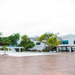 TERRAZA LOS ALMENDROS - Galerías de imágenes - Club Naval